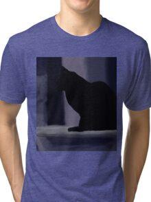 Cat on a porch Tri-blend T-Shirt