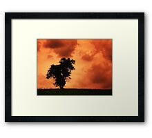 The Lonely Tree - russet sky (2011) Framed Print