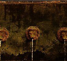 Three Lions by mrthink