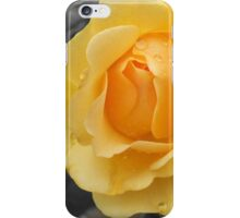Wet Rose iPhone Case/Skin