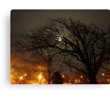 The Moonlit Tree. Canvas Print