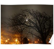 The Moonlit Tree. Poster