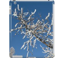 tree branch in the snow iPad Case/Skin