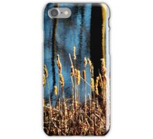 Pond - cattails and reflection (2011) iPhone Case/Skin