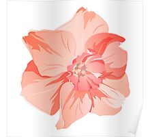 Pretty Pink Daffodil Graphic Poster