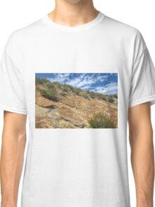 When Dinosaurs Roamed Classic T-Shirt