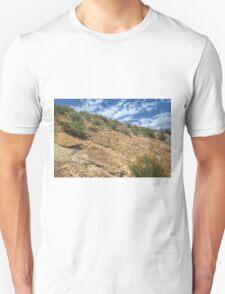 When Dinosaurs Roamed T-Shirt