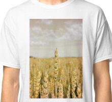Golden wheat Classic T-Shirt