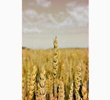 Golden wheat Classic T-Shirt