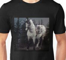 Spiritual Horse Totem Unisex T-Shirt