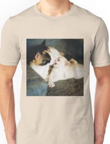 CALICO CAT AND WHITE KITTY Unisex T-Shirt