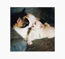 CALICO CAT AND WHITE KITTY Unisex T-Shirt