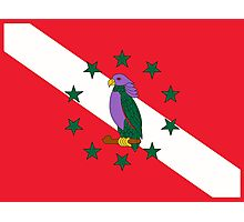 Dominica Diver Down Flag Photographic Print