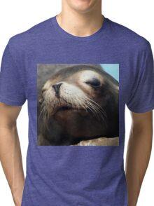 CUTE SEA LION Tri-blend T-Shirt