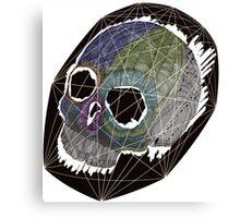 Skull 11 Canvas Print