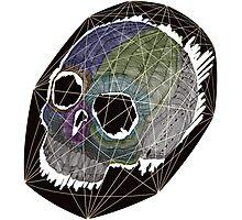 Skull 11 Photographic Print