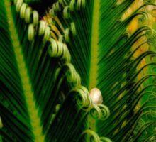 Gathering of the Palm Snails Sticker