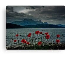 Ben Loyal in Bloom Canvas Print