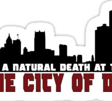 The City of Detroit Sticker