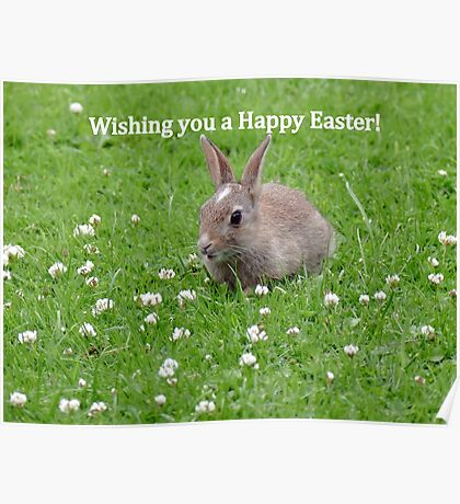 Easter Bunny Wishes - NZ Poster