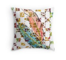 Two Creative Feathers Throw Pillow