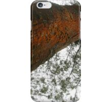 Tree branches bottom view  iPhone Case/Skin