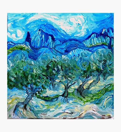 The Olive Groves where Vincent Walked Photographic Print