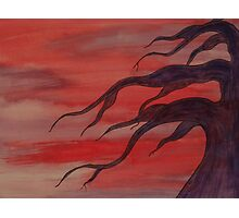 Watercolor Tree Red Sky Photographic Print