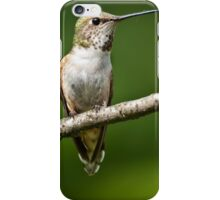 Female Rufous Hummingbird in a Tree iPhone Case/Skin