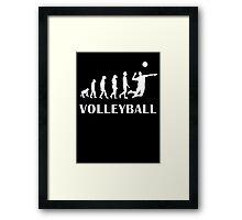 Evolution Volleyball Framed Print
