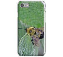Bumblebee on Green Leaf iPhone Case/Skin