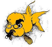 Grumpy Fish Photographic Print