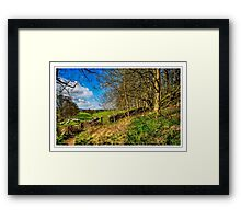 A Quiet Walk Framed Print