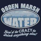 Ogden Marsh Water by robotrobotROBOT