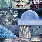 4 Seasons - Winter, 4 Jahreszeiten - Winter by Martina Cross