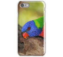 Rainbow Lorikeet with a Flash iPhone Case/Skin