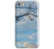 branch at sunset iPhone Case/Skin