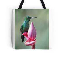 Green-Crowned Brilliant Hummingbird - Costa Rica Tote Bag