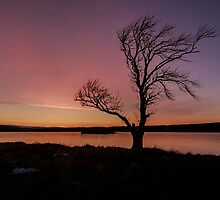 Lochindorb Sunset by OpalFire