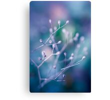 Colour boosting buds Canvas Print