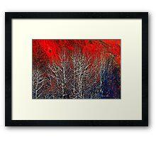 White Trees by Lena Owens/OLena Art Framed Print