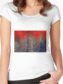 White Trees by Lena Owens/OLena Art Women's Fitted Scoop T-Shirt