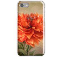 Fire Dahlia iPhone Case/Skin