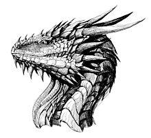 Ink Dragon Photographic Print