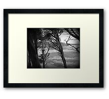 Through The Windswept Trees - Black and White Landscape Framed Print
