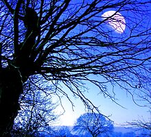 Moonlight1 by Louise Poole