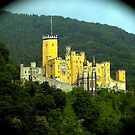 Castle Schloss Stolzenfels by Nancy Richard