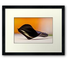Calla Lily Framed Print
