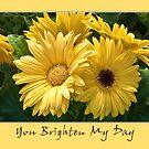 You Brighten My Day by PhotosByHealy