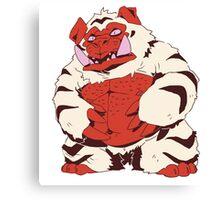 Tiger Bear Canvas Print